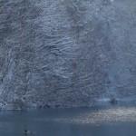 snow_banner2