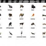 Animals100l