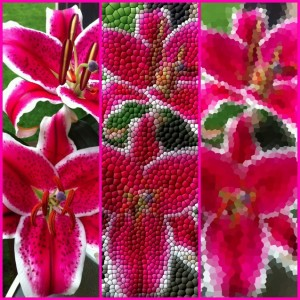 MosaicArtist by Pankaj Goswami screenshot