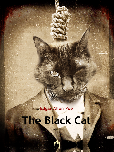 poes the black cat as an