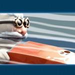 Slingshot Racing - Promo