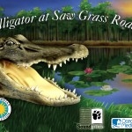 Alligator at Saw Grass Road (iPad 2) - Splash Screen