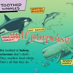 A Whale of a Tale! (iPad 2) - Educational