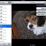 Dropbox for iPad 1