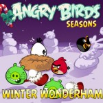 Angry Birds Seasons HD for iPad 1