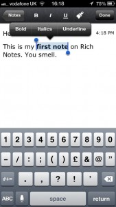 Rich Notes by DenVog, LLC screenshot