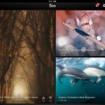 500px for iPad 2