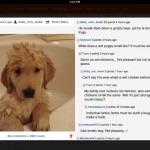Ruby for Reddit for iPad 2