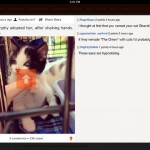 Ruby for Reddit for iPad 5