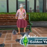 The Sims FreePlay 5