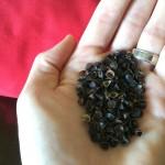 Lap Log - Buckwheat Shells