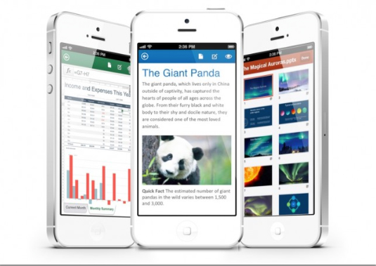 Report: Microsoft Has A Full Version Of Office Ready To Go For The iPad, iPhone