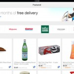 Google Shopping Express 7