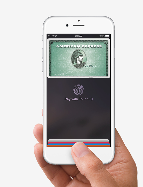 Grocery chains Winn-Dixie and BI-LO are the latest U.S. retailers to accept Apple Pay