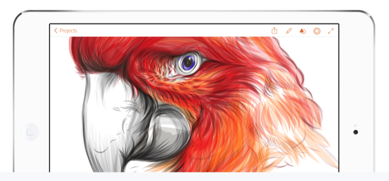 Adobe Illustrator Draw goes universal, adds eye dropper tool and more