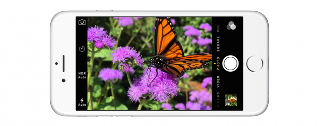 Take photos like a pro: Everything to know about your iPhone camera
