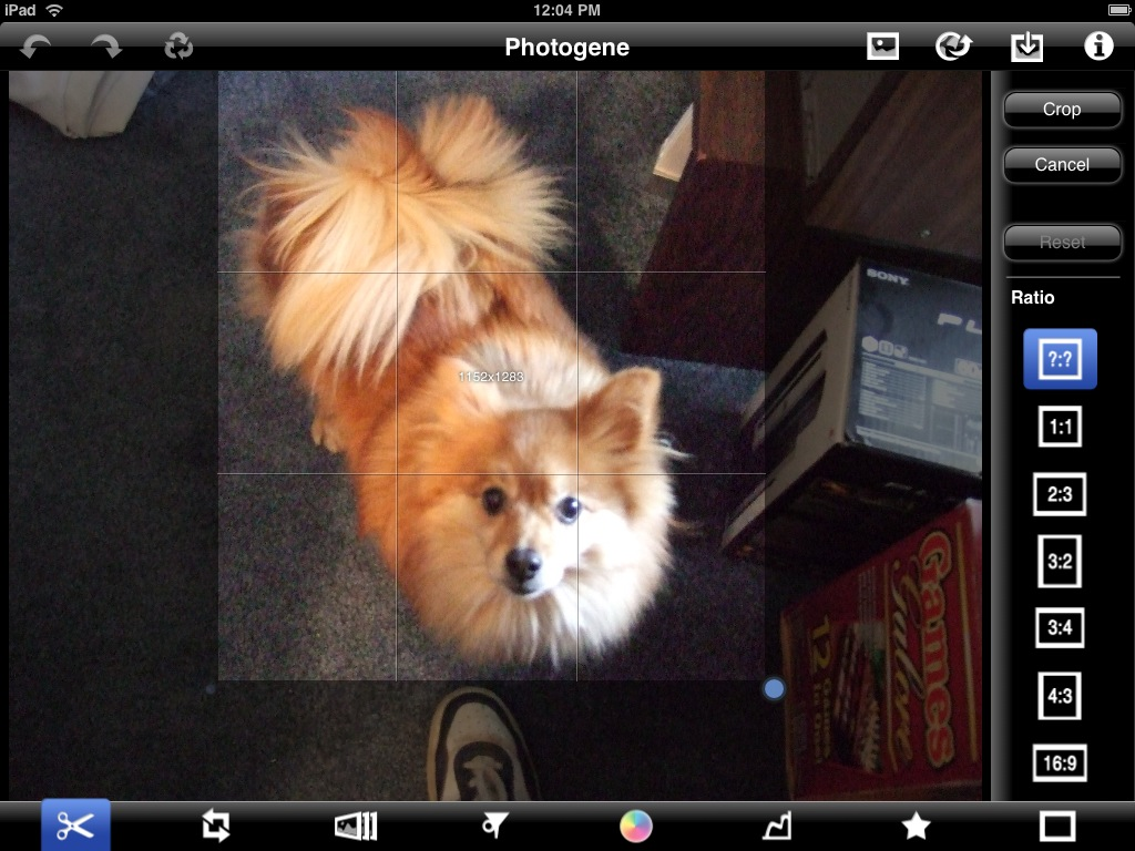 Review: Photogene for iPad