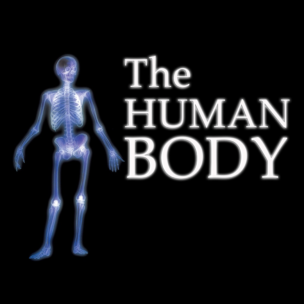 Everything You Want To Know About The Human Body