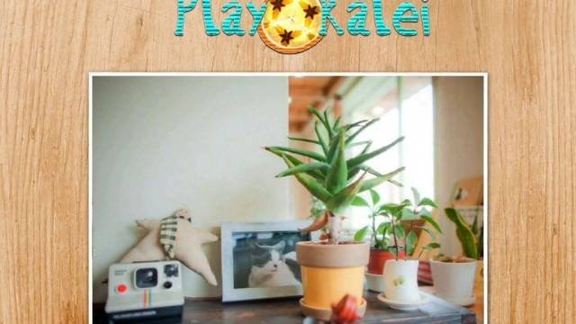 Kaleidoscopic Seek-N-Find: Play Kalei HD