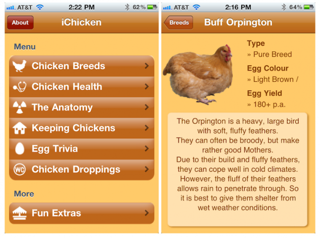 Learn How To Breed, Feed And Decipher Poop With iChicken App