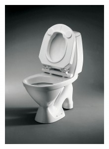 Google Survey's In The Toilet