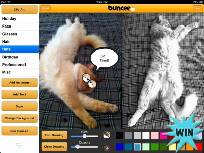 A Chance To Win A Buncee Pro For iPad Promo Code With A Retweet Or Comment