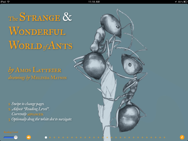 Calling All Bug Lovers! Enter The Strange And Wonderful World Of Ants