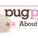 Say Hello To Pugpig, Which Combines iOS With HTML5
