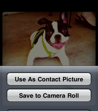 Easily Find Facebook Photos With PhotoGrabber