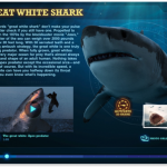 Comprehensive Shark Resource Found In Ultimate Sharks