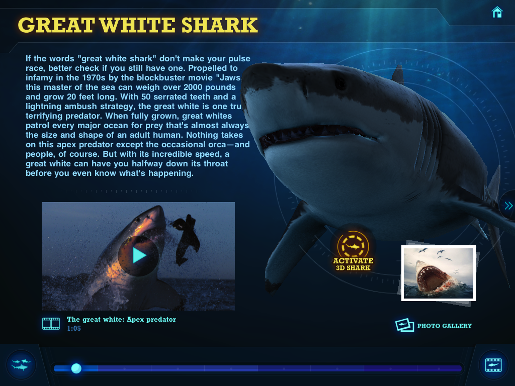 First Look: Ultimate Sharks
