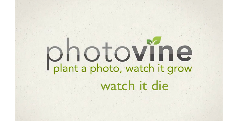 What A Lame Move - Google Kills Photovine