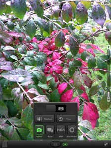Top Camera Now On The iPad - Plus, You Could Win!