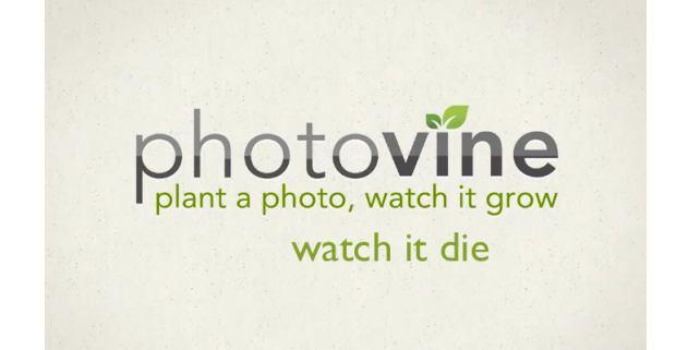 As Photovine Winds Down, Here's How To Retain Your Photos