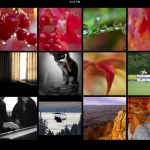 Flickr Alternative Arrives On iPad And It's Sweet!