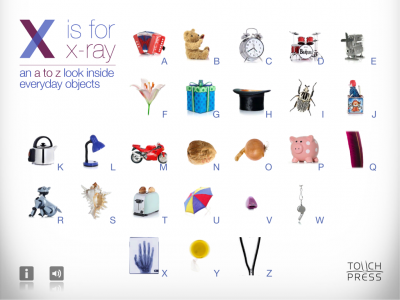 """X Is For X-Ray"" An Inside Look At The Everyday"