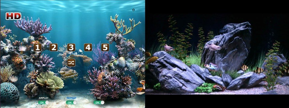 Aquarium HD TV: Take Your Apple TV Under The Sea Using This App And AirPlay