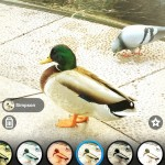 Pix: Pixel Mixer Is A Simple And Clean Photo App For Your iOS Device