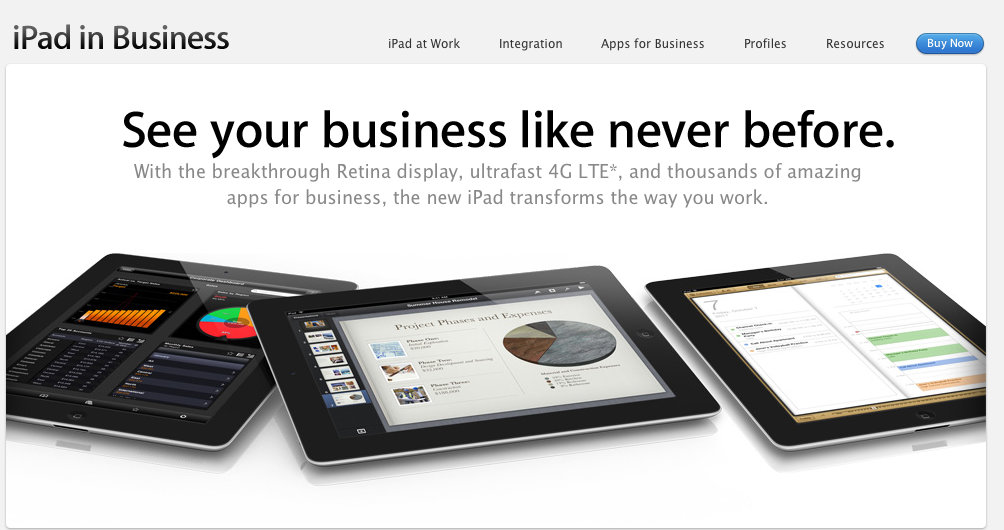 iPad and Business