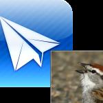 Sparrow For iPad Expected Soon