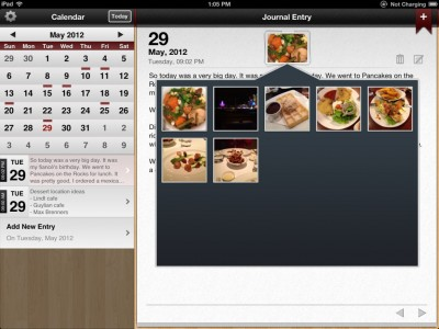 Capture 365 Journal PRO Is Lacking The 'Pro' Feeling