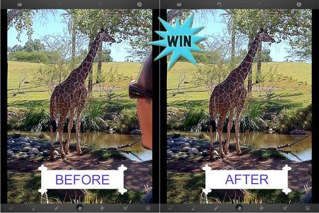 A Chance To Win A TouchRetouch Promo Code For iPad Or iPhone