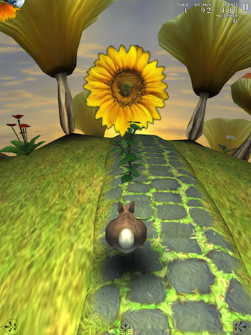 Jackrabbit Sunshine Is Hopping His Way To A Flowery Adventure