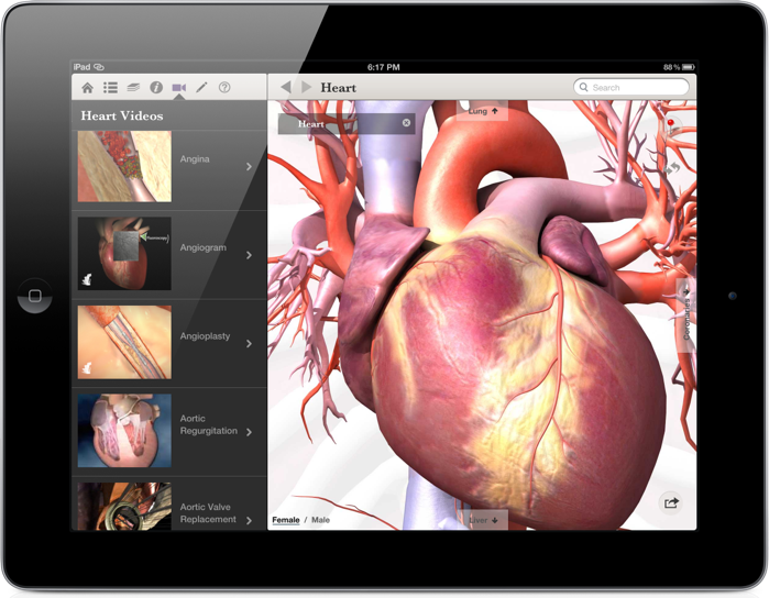 Healthline Body Maps Offers A 3-D Look At The Human Body On iPad
