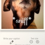 Elegantly Give Your Images Captions With Typic
