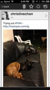 #PAN by Kosso screenshot
