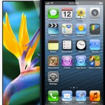 Touchscreen On The iPhone 5, Fifth-Generation iPod Touch Suffers From Scrolling Glitch