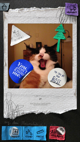 Get Creative With Your Photos Using Bucket Labs' New App Stickr