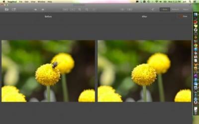 Mac App Snapheal Update Adds Performance Enhancements, Goes On Sale