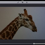 Now You Can Blend Individual Frames From GIFs In Image Blender